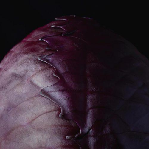 Légumes : le chou